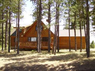 mountain vacation home, Angel Fire