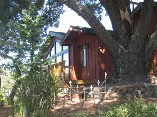 $125/ 550 sq ft studio-Vacation Home Base, Novato