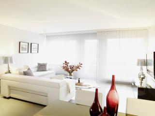SERVICED SENIOR 2 BEDROOM APARTMENT OERLIKON, Zúrich