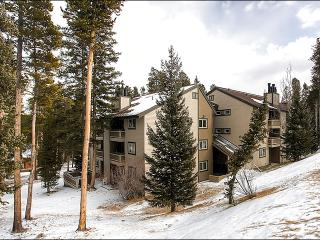 Stunning Valley and Mountain Views - Two Blocks from Nordic Center (13233), Breckenridge