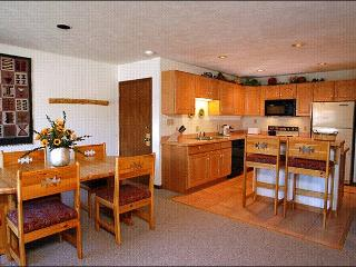 Open and Spacious Condo - Wonderful Year-Round Getaway (1149), Crested Butte