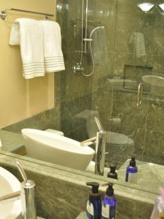 Guest Bath - double shower