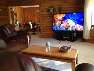 Living room with 70 inch home theater