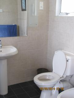Attached Bathroom 2 - View 2