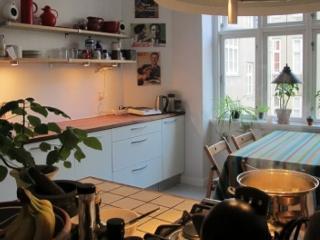 Nice Copenhagen apartment at Noerreport station, Copenhague