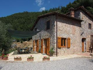 2 Farmhouses with 5 bedrooms and Pool in Countryside near Lucca