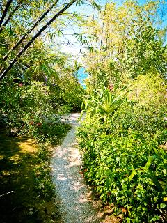 View of path from Big Grape to the sea area
