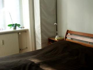 Lovely Copenhagen apartment close to Valby Station