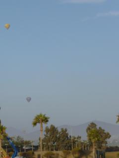 Balloons flying in the evening