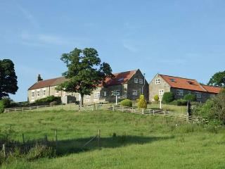 BUTTERCUP COTTAGE, near Whitby, scenic walks, off road parking and a shared garden in Castleton Ref 16250