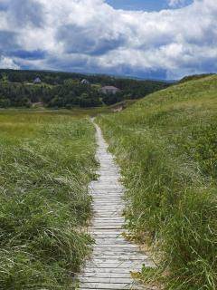 Boardwalk in Inverness