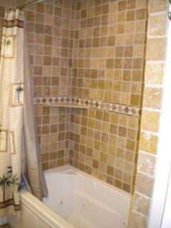 Guest Bathroom Shower and Tub