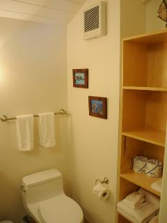 Large loft bathroom with ample shelving.