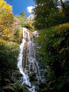 Mingo falls....located in Cherokee.  A beautiful ride from the Chalet!