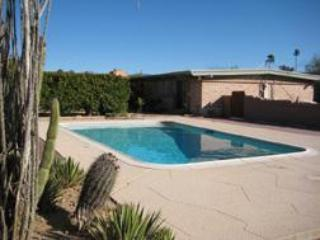Heated pool adjacent to patio and home