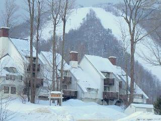 Ski In Ski Out Slopeside Condo full of amenities!, Killington