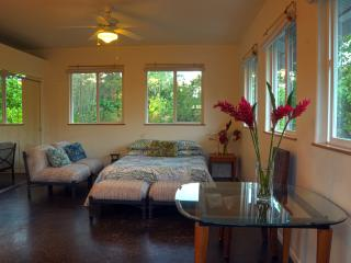 Oliana Cottage - Allergy Friendly - Near Kalapana