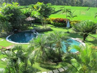 Ubud Green Paradise Large villa 3 Bed with staff