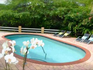 ARUBA - Luxury 6 persons VILLA with swiming pool, 3 bedrooms and 2 bathrooms