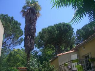 Le Petit Jardin résidence appartement « Lavender », Limoux