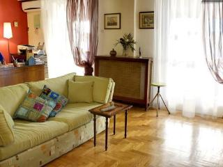 A lovely 100 sqm apartment in the heart of Athens