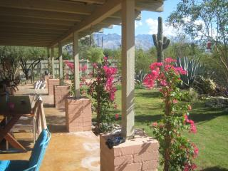 Charming home w/ Garden, Guest House, Jacuzzi and Pool,WIFI, central near U of A