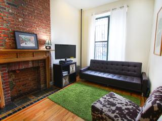 AMAZING ONE BEDROOM FLAT IN MANHATTAN