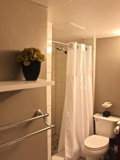 Artsy Bathroom with Shower