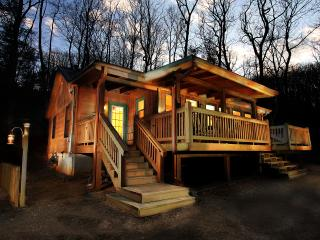 Cherokee Point - Views! Private setting, Hot Tub, Ellijay