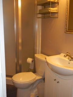 Bathroom with step in shower on lower level