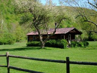 Cold Spring Lodge - 2 BR Catskill Mountain Cabin, Big Indian