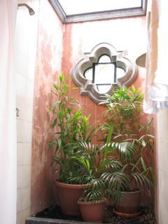 The Villa brings the lush gardens into the guest bathroom showers.
