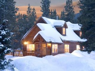 Breck Bear Cabin. 3 bedrooms, 3 bathrooms, close to town. Hot tub, fire pit. Wii