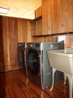 New top of line LG super-capacity washer & dryer. Refinished vintage laundry sink. Sliding windows.