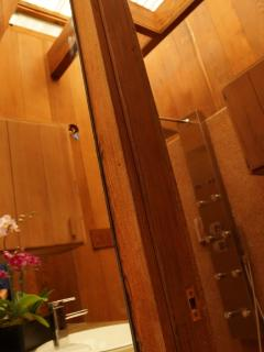 Angle shot showing portion of 2nd MB private shower/toilet area. One of 4 exotic shower assemblies