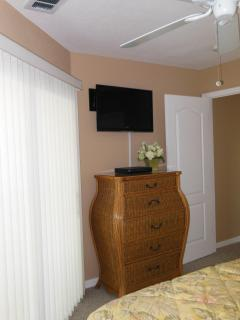 2nd Guest Bedroom walk out / TV