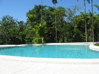 Rainforest Estate