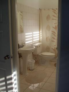 Ensuite bathroom with tub/shower combination