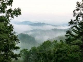 3 Bedroom Theater Cabin With Amazing Views, Covered Decks, Sevierville