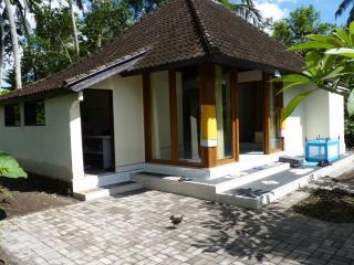Rumah Cicak Experience Bali near Ubud