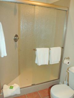 Spacious walk-in, granite-lined shower in second bath