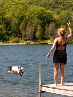 A guest's dog leaps off the dock in ecstasy!