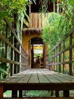 Bridge entrance to treehouse