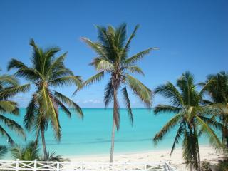 2 Luxury Apartments for 2-4 on Exuma's Best Beach!, Gran Exuma
