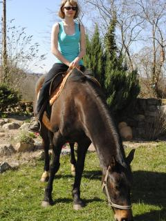 One of our horses in France