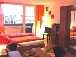 Beautiful Salzburg Studio Apartment, Bad Vigaun