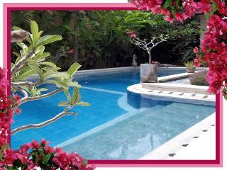 The Zoo -3 bdrm villa/pool in heart of Seminyak
