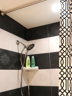 Beautifully tiled shower/tub combination in Mickey bathroom