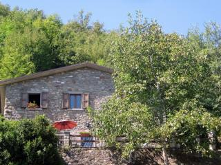 Casa Cappellino - Your Tuscan Vacation Home, Caprese Michelangelo