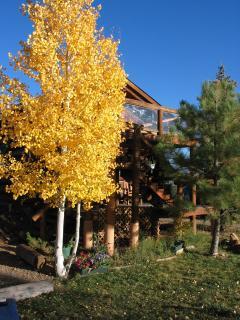 Log Cabin in the fall